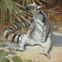 A lemur painting