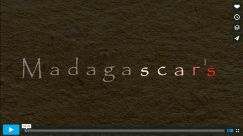 MadagaSCARS - a five minute flash animation created by Camille Wainer (camillewainer.com)