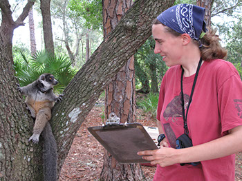 Girl in red shirt with a clipboard interacting with a lemur