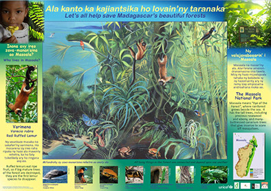 AKO book series poster Malagasy conservation LCF lemur conservation foundation red-ruffed lemur fuzzy and furry