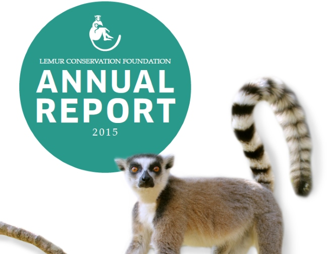 Cover of LCF's 2015 Annual Report