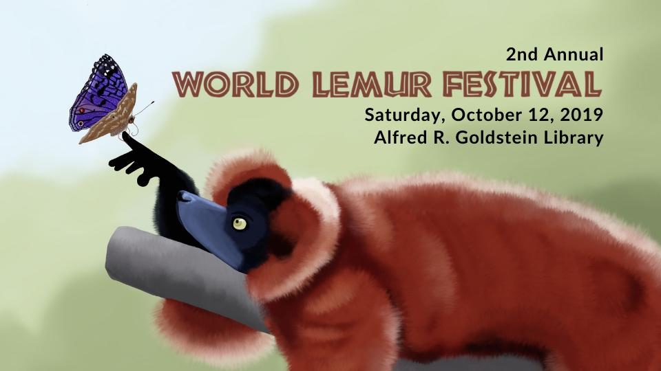 World Lemur Festival returns to Sarasota