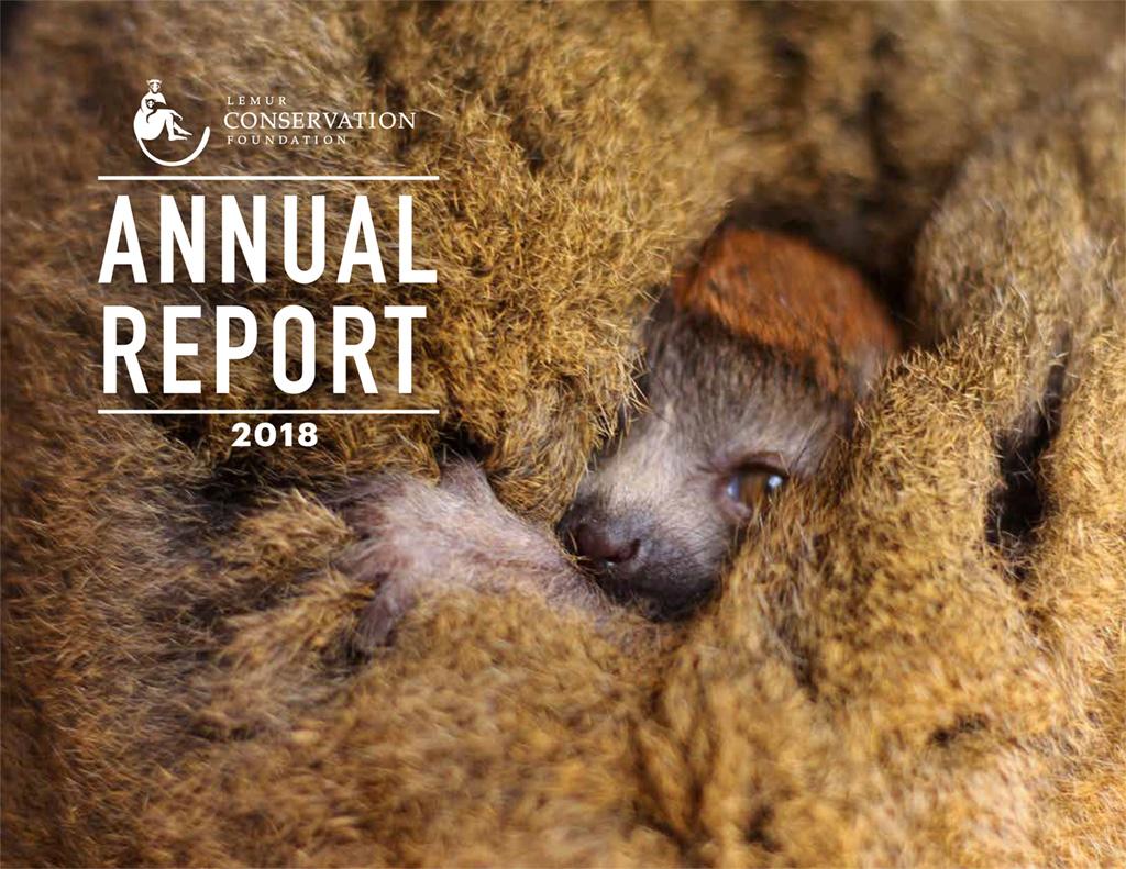 LCF 2018 Annual Report