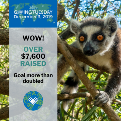 2019 GivingTuesday Results