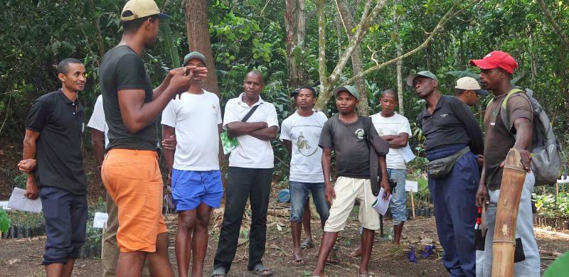 Reforestation field class training