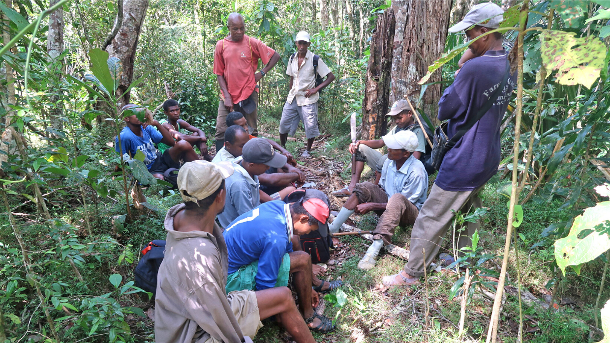 LCF Marojejy forest monitoring team members