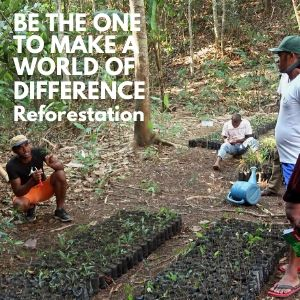 Be the One to Make a World of Difference by Supporting LCF Reforestation Programs