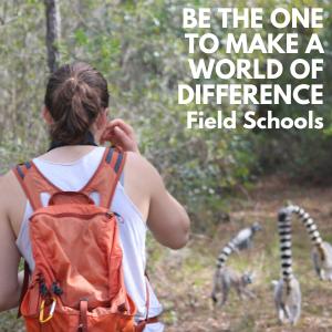 LCF Field Schools