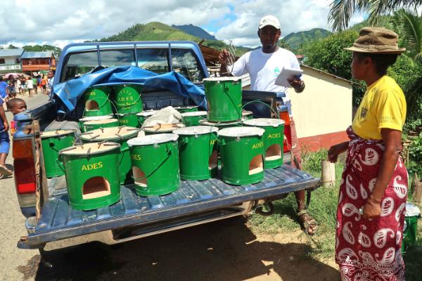 Fuel-efficient stove distribution