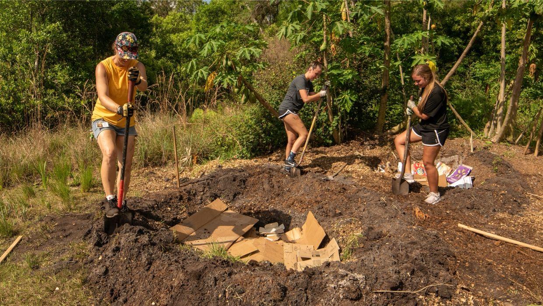 Installing a banana circle at LCF's reserve