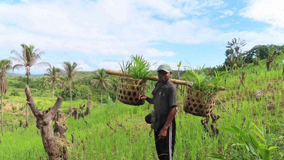 Reforestation training with Green Again: Madagascar