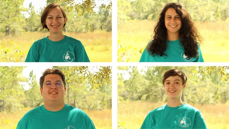 Welcome LCF's new fall interns