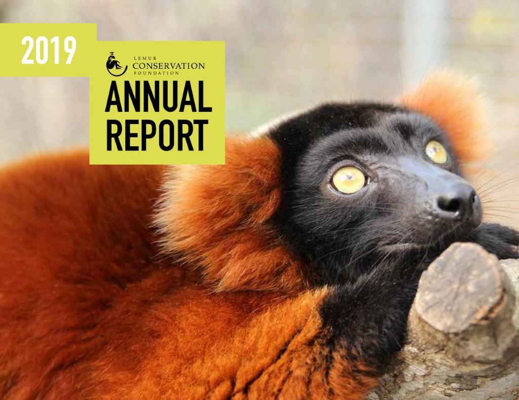 LCF 2019 Annual Report Cover
