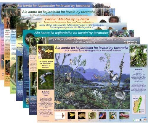 Lemur Posters from Lemur Conservation Foundation