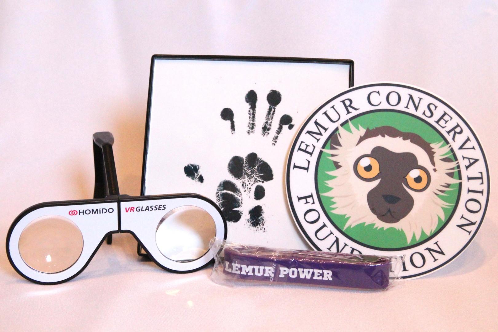 World Lemur Festival Party Pack