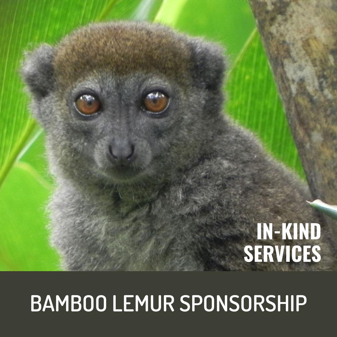 World Lemur Festival 2021 - In-Kind Services Bamboo Lemur Sponsorship Level